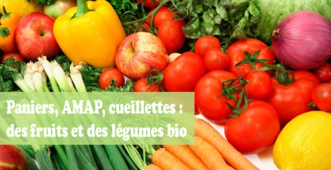 on_-_fruits_legumes_bio_-_amap_-_Dossier_bis_0